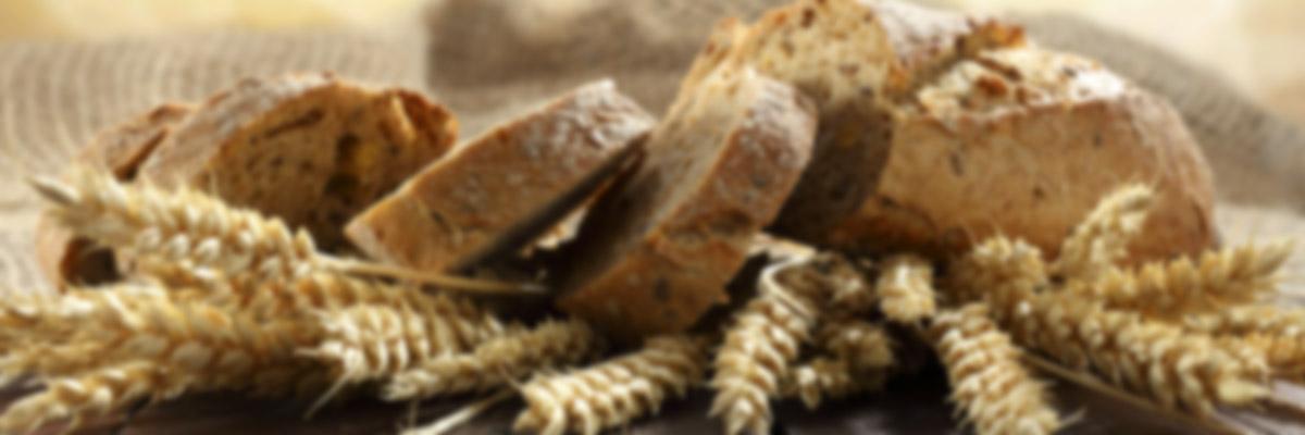 ekmek makina